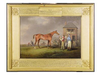 Portrait of 'Quiz', the Property of Lord Rous, after His Last Race at Newmarket-Henry Bernard Chalon-Giclee Print