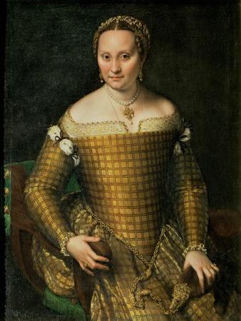 https://imgc.artprintimages.com/img/print/portrait-of-the-artist-s-mother-bianca-ponzoni-anguisciola-1557_u-l-p56ixy0.jpg?p=0