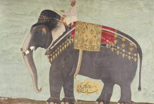 "Portrait of the Elephant ""Alam-Guman Gajraj"", circa 1650"