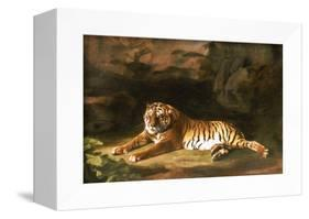 Portrait of the Royal Tiger, circa 1770-George Stubbs-Framed Premier Image Canvas