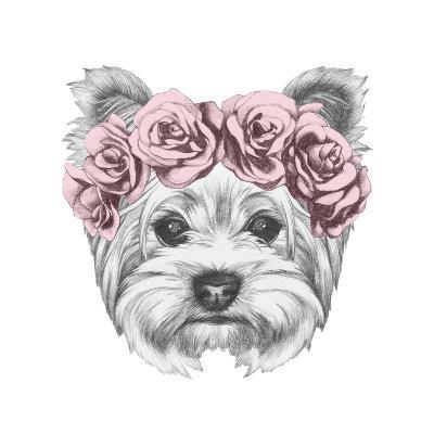 Portrait Of Yorkshire Terrier Dog With Floral Head Wreath Hand