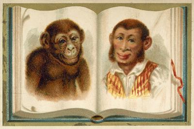 Portraits of an Ape and a Man--Giclee Print