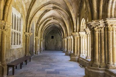 Portugal, Coimbra. Old Cathedral Cloister. Archways, Walking Paths, Courtyard-Emily Wilson-Photographic Print