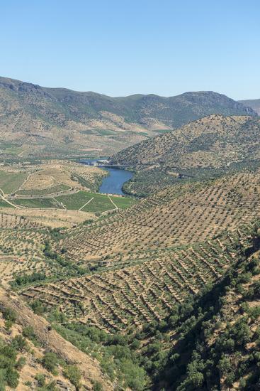 Portugal, Figueira de Castelo Rodrigo, View of Douro River Valley-Jim Engelbrecht-Photographic Print