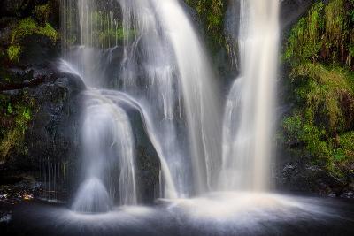 Posforth Gill Waterfall, Bolton Abbey, Yorkshire Dales, Yorkshire, England, United Kingdom, Europe-Bill Ward-Photographic Print