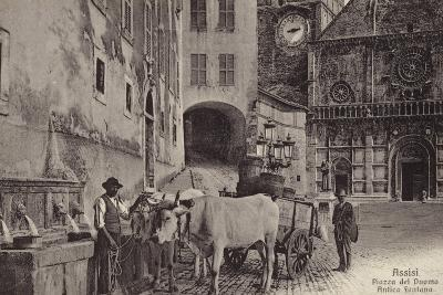 Postcard Depicting the a Fountain in the Piazza Del Duomo--Photographic Print