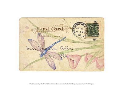 Postcard Dragonfly II-Nancy Shumaker Pallan-Art Print