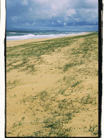 Postcard from Australia-Incredi-Giclee Print