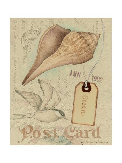 Postcard Shells IV-NancyShumaker Pallan-Art Print