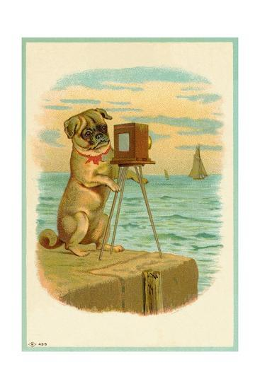 Postcard with a Pug and Camera--Giclee Print
