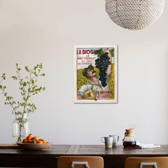 poster advertising la biogine published by affiches dinterieur c1930
