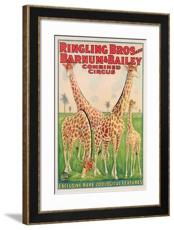 Poster Advertising Ringling Bros and Barnum and Bailey Combined Circus, C.1928--Framed Giclee Print