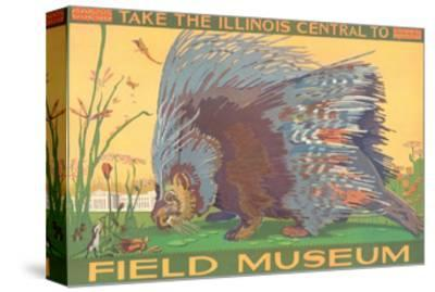 Poster for Field Museum with Porcupine