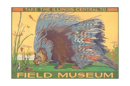 Poster for Field Museum with Porcupine--Giclee Print