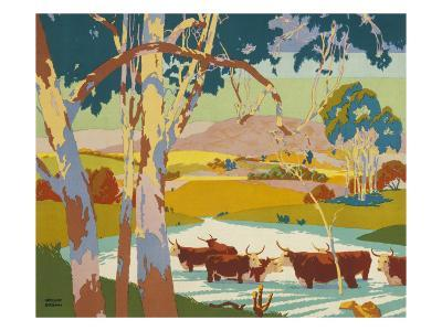 Poster for the Empire Marketing Board, Depicting Cattle Raising in Australia--Giclee Print