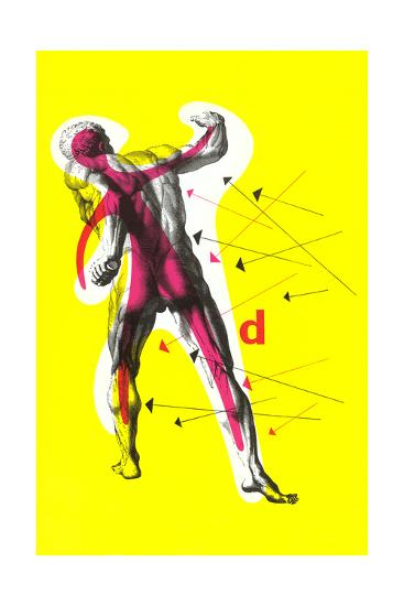 Poster of Arrows Pointing to Muscles--Giclee Print