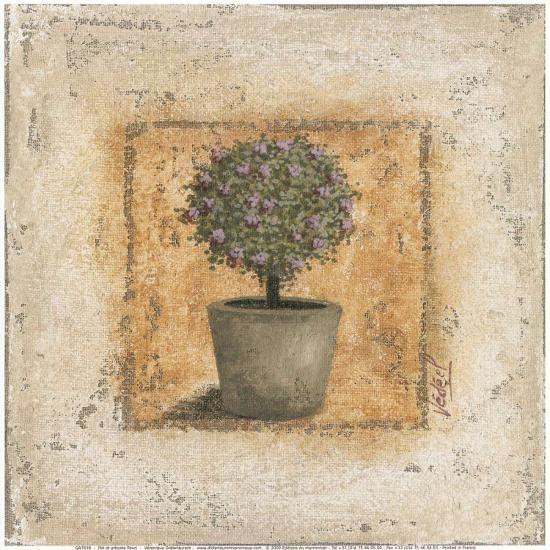 Pot et Arbuste Fleuri-V?ronique Didier-Laurent-Art Print