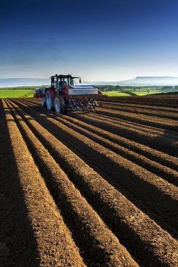 Potato Farming in Northern Ireland-Chris Hill-Photographic Print