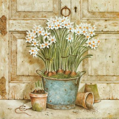 Potted Flowers II-Eric Barjot-Art Print