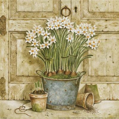 Potted Flowers II-Eric Barjot-Art Print