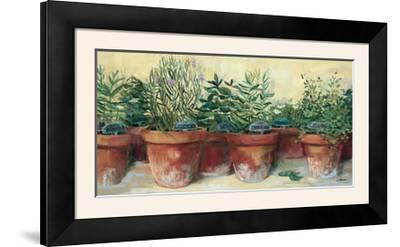 Potted Herbs I-Carol Rowan-Framed Photographic Print