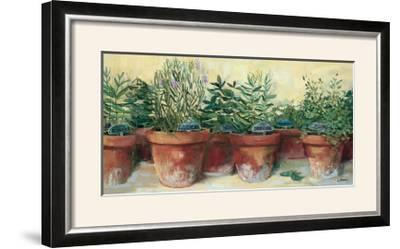 Potted Herbs I-Carol Rowan-Framed Photographic Print