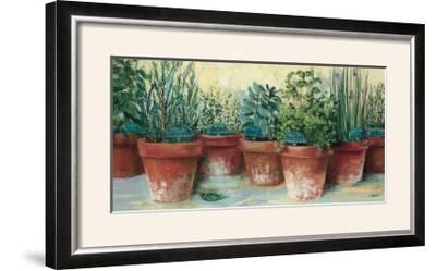 Potted Herbs II-Carol Rowan-Framed Photographic Print