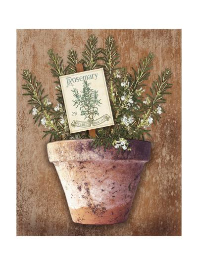 Potted Herbs II-Kate Ward Thacker-Art Print
