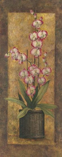 Potted Orchid in Pink-T^ C^ Chiu-Art Print