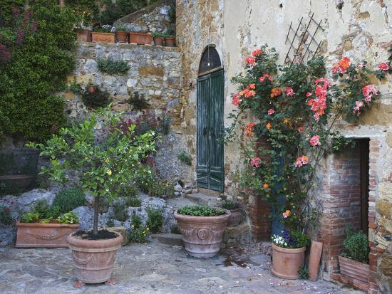 Potted Plants Decorate a Patio in Tuscany, Petroio, Italy-Dennis Flaherty-Photographic Print