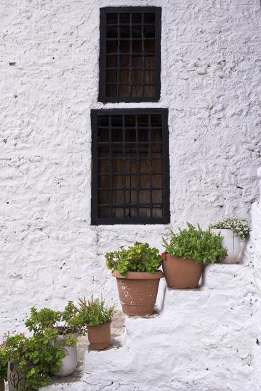 Potted Plants Line the White-Washed Stairways at the National Ethnographic Museum-Krista Rossow-Photographic Print