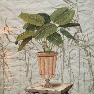 Potted Trees-N. Lorenz-Art Print
