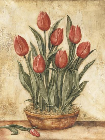 Potted Tulips-Tina Chaden-Art Print
