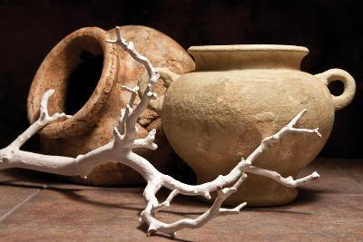 Pottery with Branch II-C^ McNemar-Photographic Print