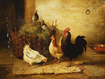 Poultry and Pigeons in an Interior-Walter Hunt-Giclee Print