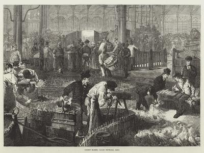 Poultry Market, Halles Centrales, Paris--Giclee Print