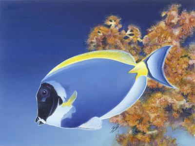 Powder Blue Tang-Durwood Coffey-Giclee Print