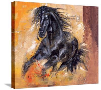 Powerful Arabian Beauty-Joadoor-Stretched Canvas Print