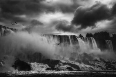 Powerful Splendor-Yvette Depaepe-Photographic Print