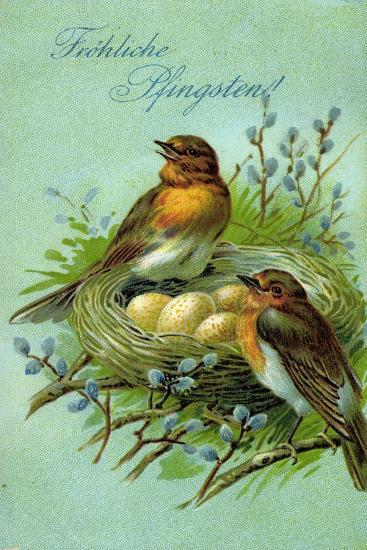 Präge Fröhliche Pfingsten, Vögel, Nest, Eier--Giclee Print