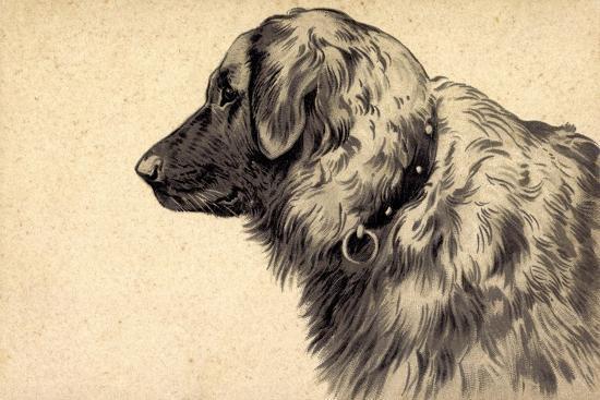 Präge Hund, Seitenprofil Mit Hundehalsband--Giclee Print