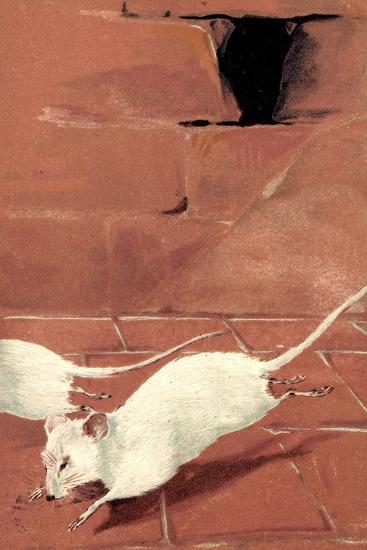 Präge Litho Zwei Weiße Mäuse, Mausloch, Ziegelwand, Albino--Giclee Print