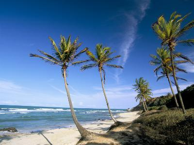 Praia Do Amor, Pipa (Natal), Rio Grande Do Norte State, Brazil, South America-Sergio Pitamitz-Photographic Print