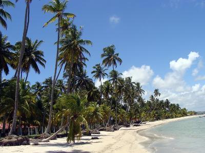 Praia Dos Carneiros-JOETEX1-Photographic Print