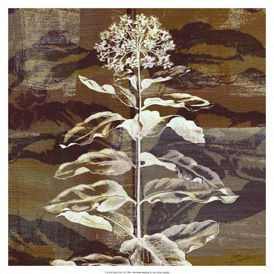 Prairie Mix VI-John Butler-Art Print