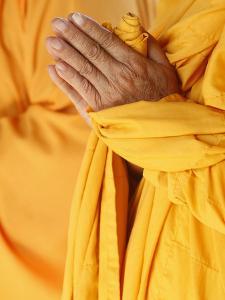 Praying Buddhist Monk, Thiais, Vale De Marne, France, Europe