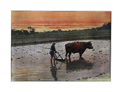 Preparation of a Rice Plantation in Japan, C1890-Charles Gillot-Giclee Print
