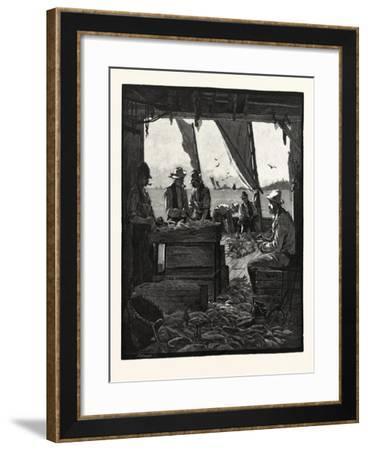 Preparing Fish for Market, Canada, Nineteenth Century--Framed Giclee Print