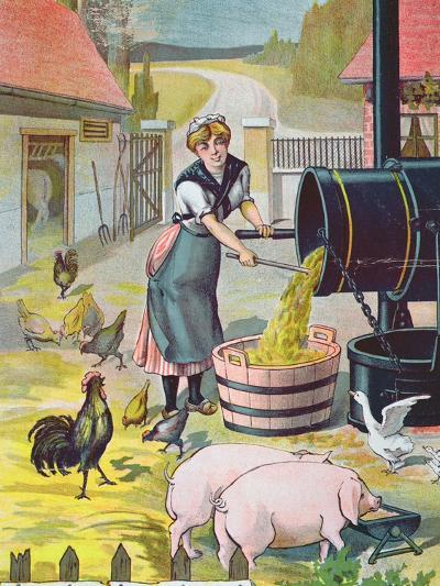Preparing Food for the Animals in the Farmyard--Giclee Print