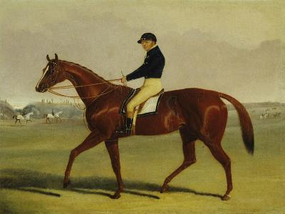 'Preserve' with Flatman Up at Newmarket, 1835-John Frederick Herring Jnr-Giclee Print
